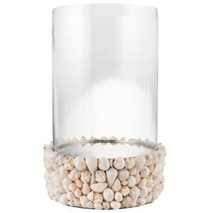 Image of Shell lantern S