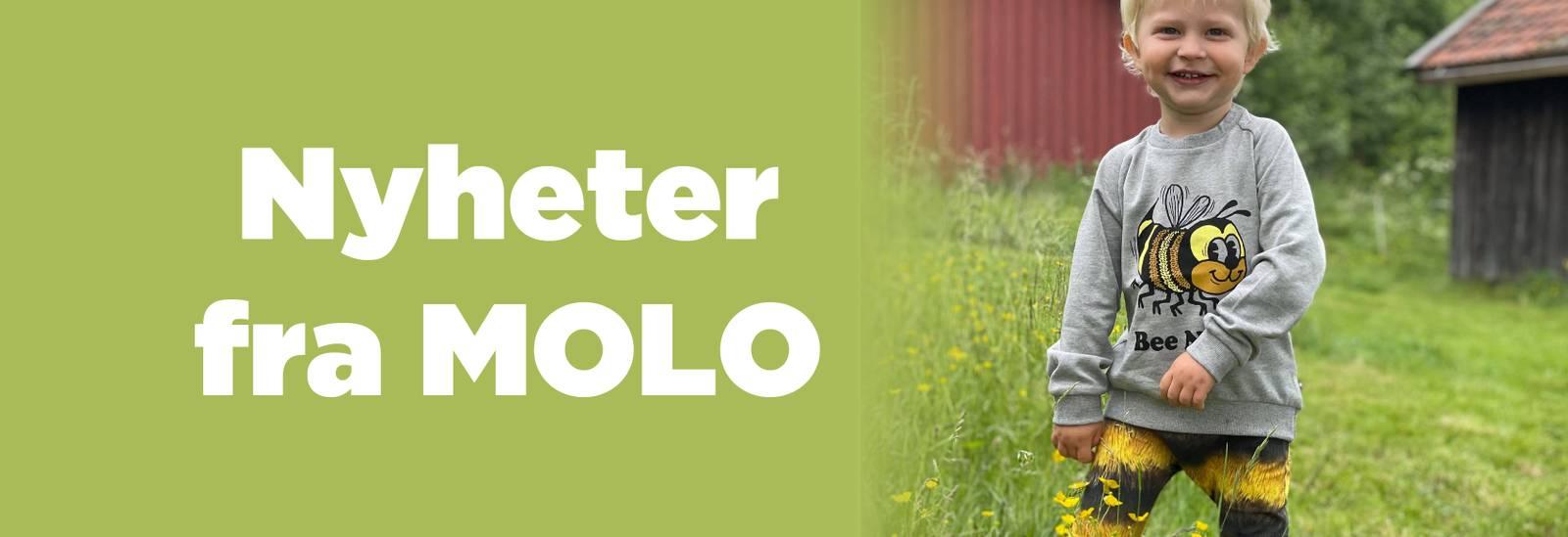 Nyheter fra MOLO