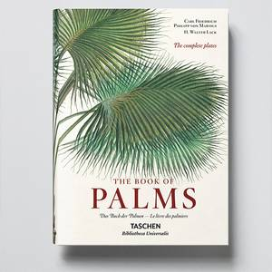 Bilde av The Book of Palms - XL