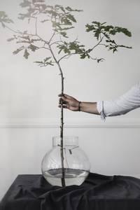 Bilde av ERNST Vase Glass 38 cm