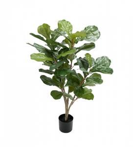 Bilde av Mr Plant Fiolfiken 90 cm