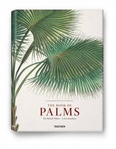 Bilde av The Book of Palms Small