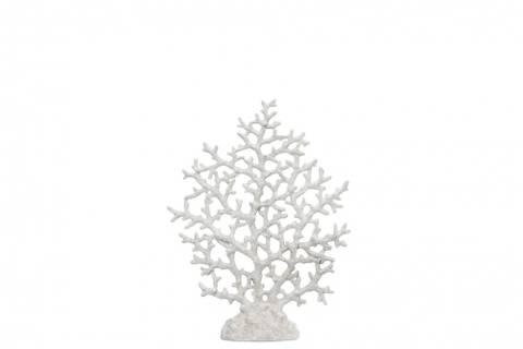 Bilde av Korall liten hvit