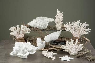 Bilde av Korall dekor