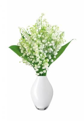 Bilde av Floral badesalt liljekonvall