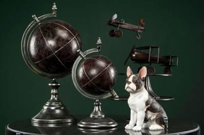 Bilde av Hund fransk bulldog