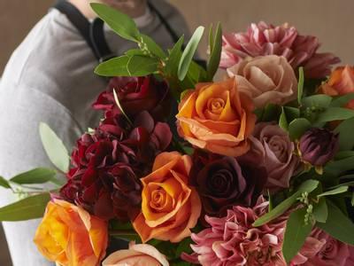 Bilde av Chrysantemum oransje