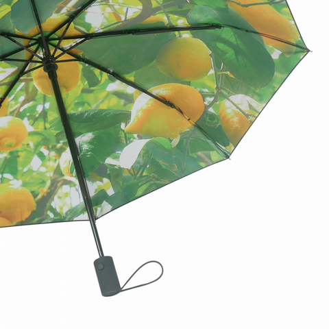 Bilde av Paraply Sitroner