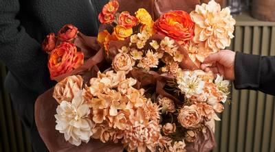Bilde av Chrysantemum ferskenfarget