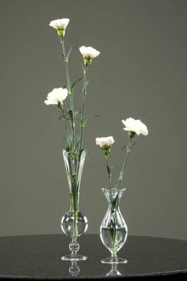 Bilde av Glassvase Nouveau