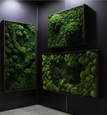 Bilde av Rammet mosebilde 15 x 100 cm