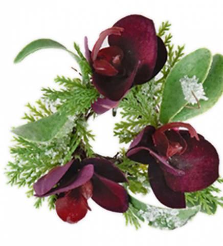 Bilde av Lysmansjett purpurfarget