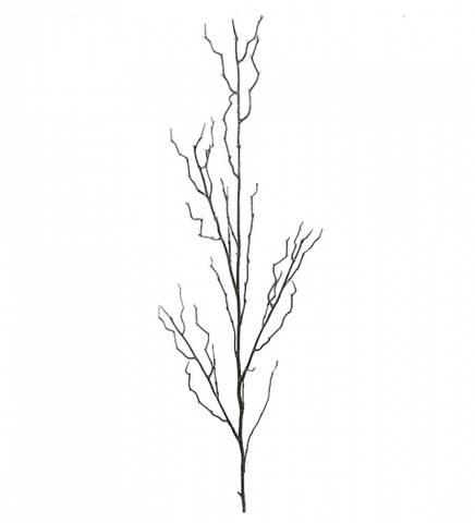 Bilde av Kvist 124 cm