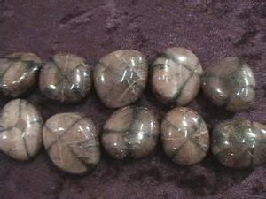 Bilde av chiastolitt - chiasolite