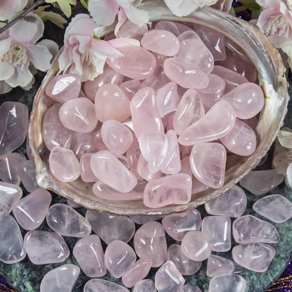 girasol - rosa - pink girasol M