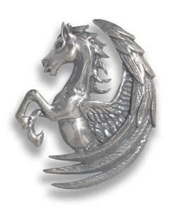 Bilde av Pegasus Fortuna for