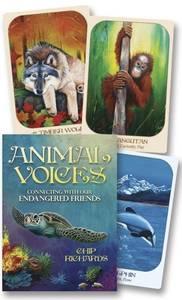 Bilde av Animal Voices: Connecting