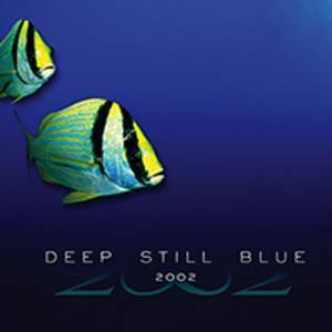 Bilde av Deep Still Blue (CD&DVD) -