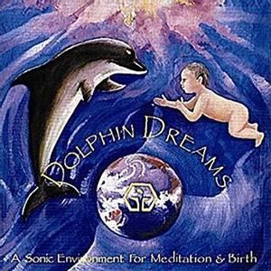 Bilde av Dolphin Dreams - Jonathan