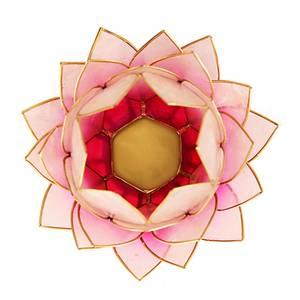 Bilde av Lotus telysholder - Lotus light pink gold trim