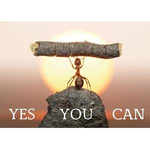 Bilde av Postcards Yes you can