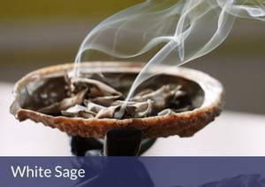 Bilde av Hvit Salvie S / White Sage Smudge - 10cm