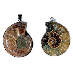 Bilde av Ammonite anheng
