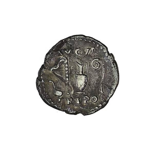 Bilde av Vespasian Denar 69-79 Presteredskaper