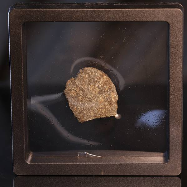 Bilde av Steinmeteoritt (NWA-kondritt), skive, 10,42 gram