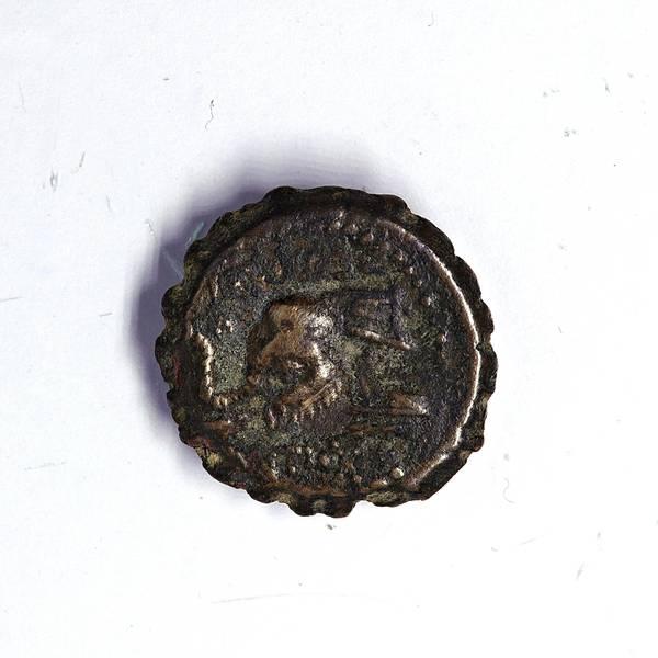 Bilde av Antiochos IV Bronse 175-164 f.Kr. Elefant!