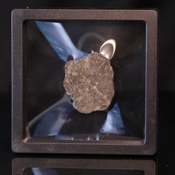 Bilde av Steinmeteoritt (NWA-kondritt), skive, 23,5 gram