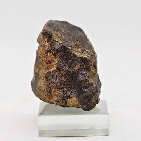 Bilde av Marsmeteoritt NWA 7397, 31,1 gram