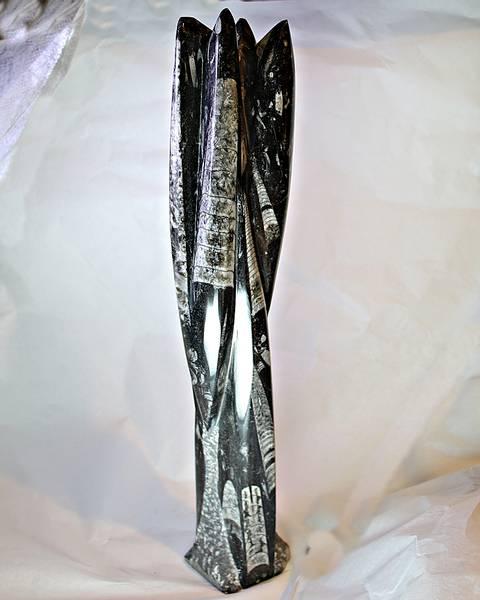 Bilde av Orthoceras-skulptur