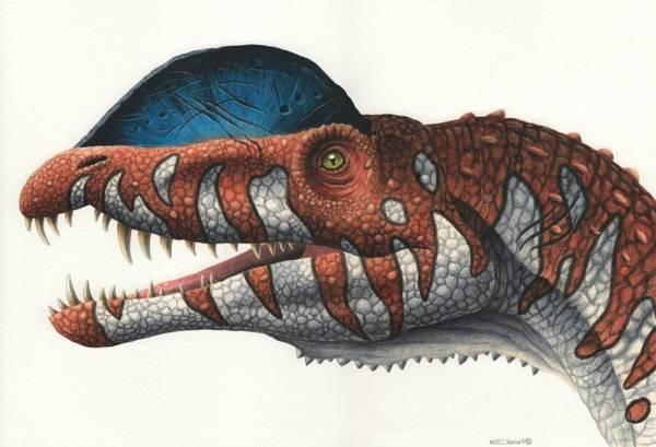 Bilde av Dilophosaurus - plakat