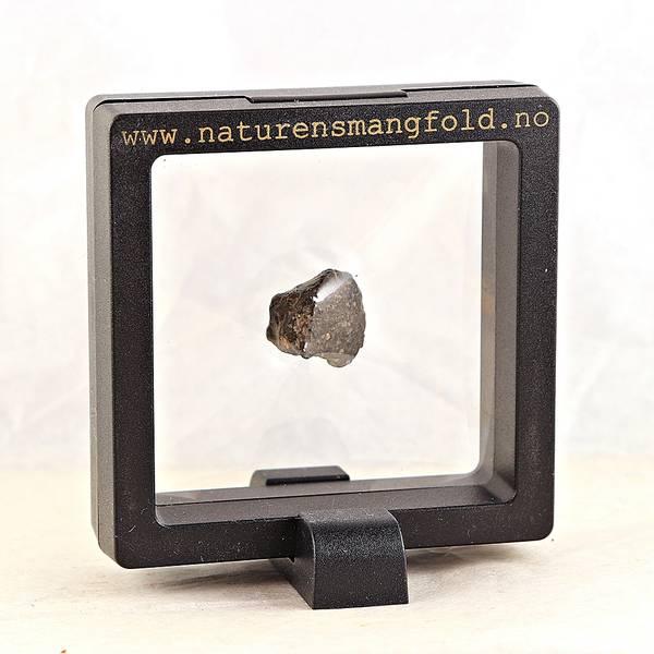 Bilde av Kondritt fra Mali, 5-6 gram