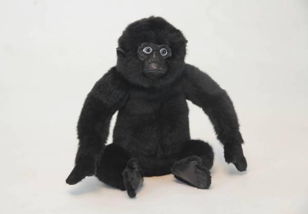Bilde av Gorilla-baby