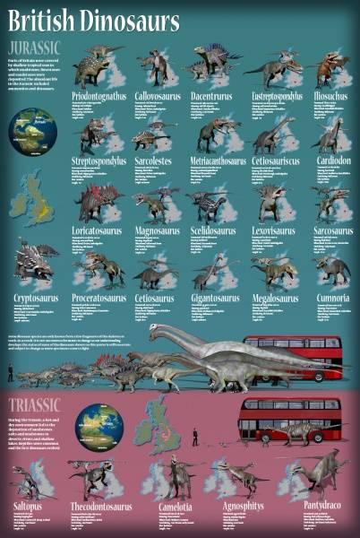 Bilde av Plakat med britiske dinosaurer fra trias og jura