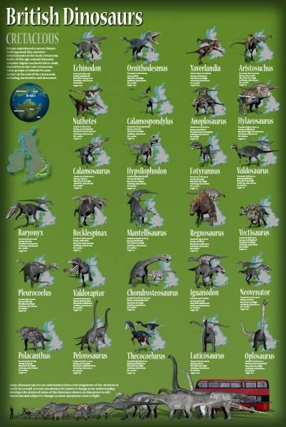 Bilde av Plakat med britiske dinosaurer fra kritt