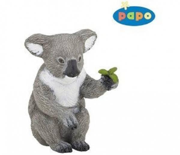 Bilde av Koala (Phascolarctos cinereus)