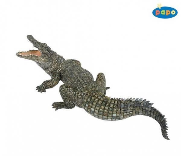 Bilde av Nilkrokodille (Crocodylus niloticus)