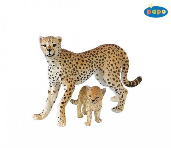 Bilde av Gepard med unge (Acinonyx jubatus)