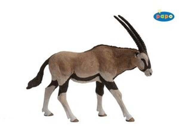 Bilde av Oryx/gemsbok (Oryx gazella)