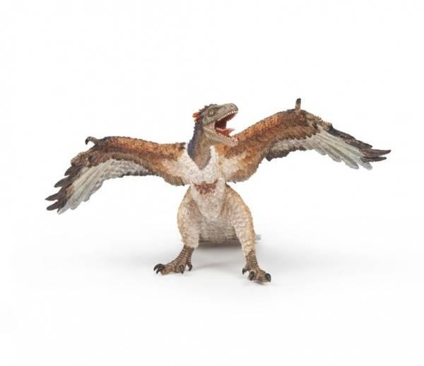 Bilde av Archaeopteryx