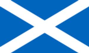 Bilde av Gjesteflagg Skottland 30 cm
