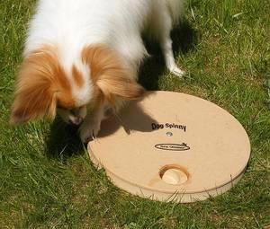 Bilde av Dog spinny