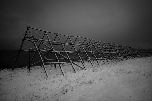 Bilde av Erik Skabo - Fiskehjell
