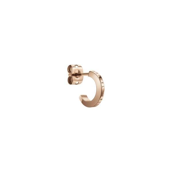 Bilde av Elan Earrings RG