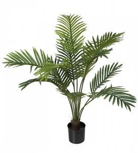 Bilde av Palm