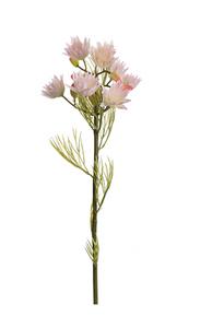 Bilde av Blushing Bride 50 cm