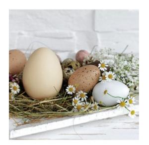 Bilde av Servietter Eggs